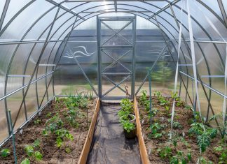 Kasvuhoone valimine ja paigaldamine